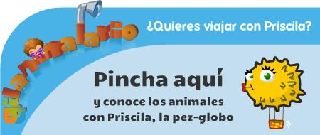 Conoce los animales con Priscila, la pez globo, con la voz de Ana Bettschen